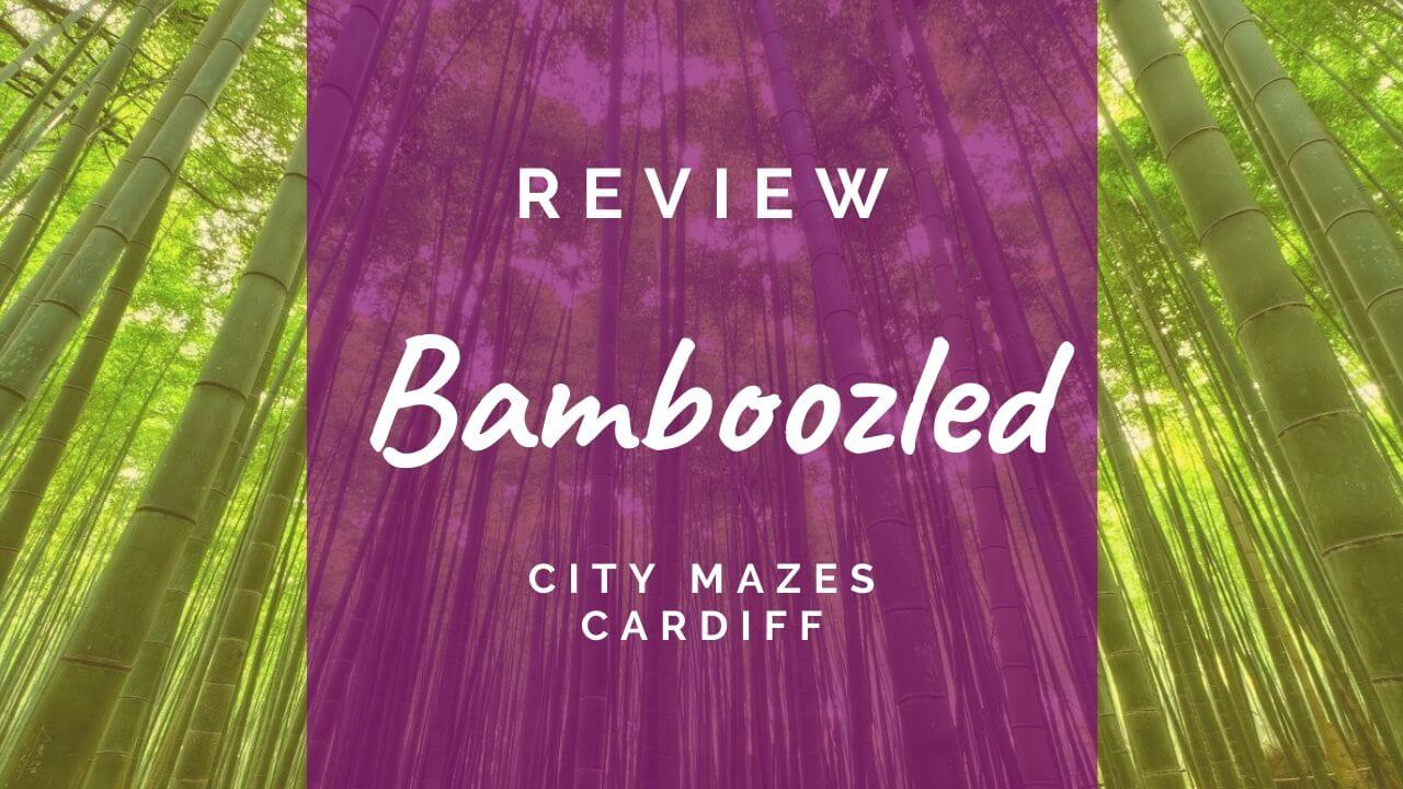 Bamboozled review at City Mazes Cardiff